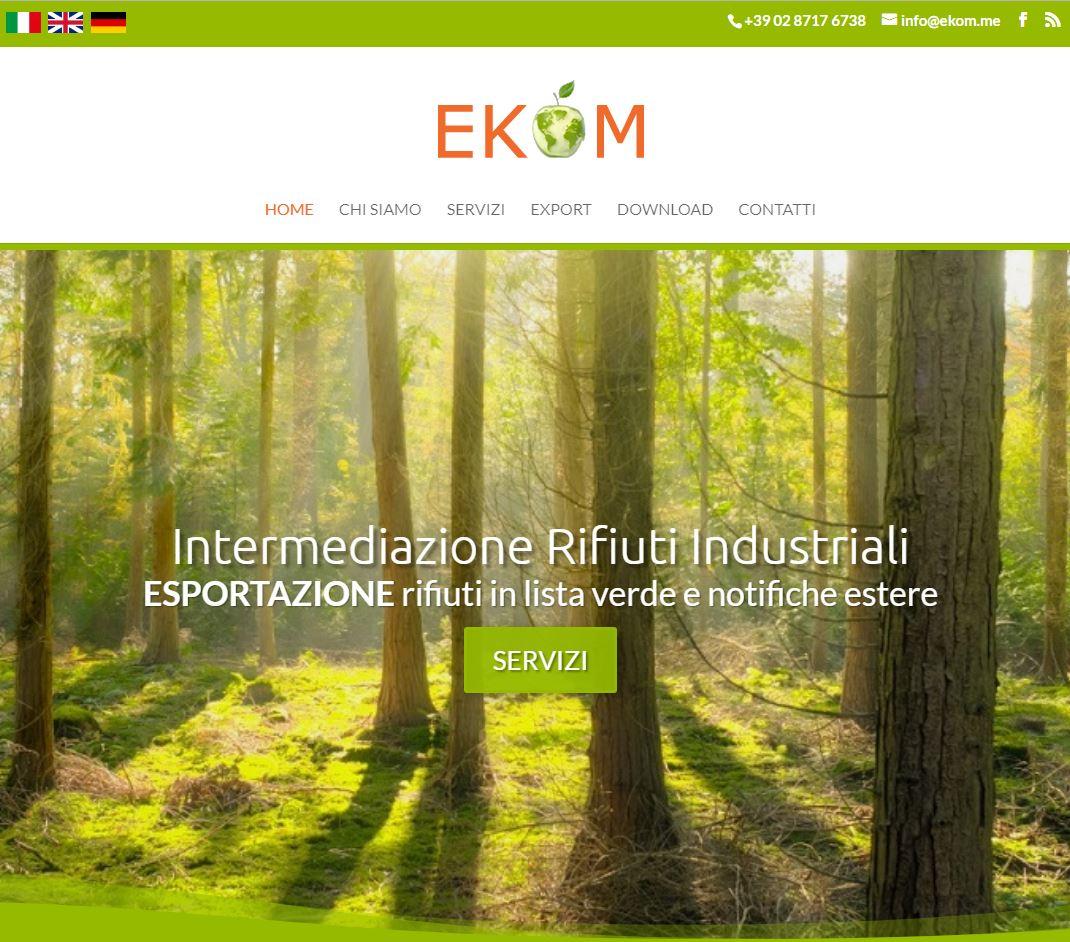 Realizzazione Sito Ekom